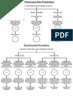 Bio Proj Diagram