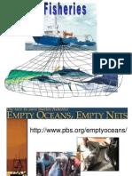 022 Fisheries