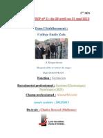 Rapport de Stage Emile Zola