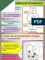 Dopamina y Transmision Dopaminergica