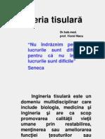 Inginerie Tisulara