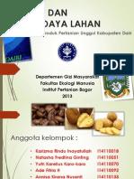 Ekopang_pangan Dan Sumber Daya Lahan