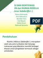 Isolasi Dan Identifikasi Antosianin Dari Bunga Rosella (