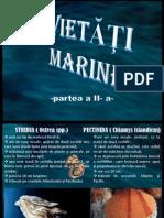 Vietatimarine Pesti Part.ii