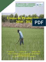 Costos de Produccion 2010-2011