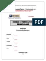 02 Informe Final - Desempeño Laboral