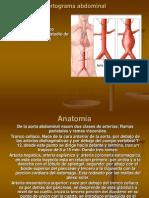 Estudios Especiales Aortograma Abdominal