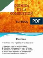 EL FUEGO.pdf