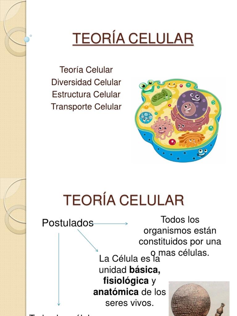 Teoría Celular Citoplasma Biología Celular
