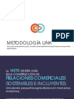 Metodologia LINK Version Resumen