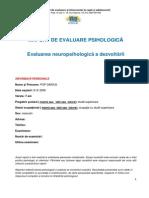 Raport Evaluare neuropsihologica
