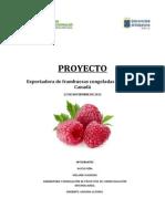 Trabajo Formulación de Proyectos.pdf