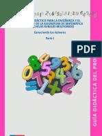 Conocimiento de Matematica 2013