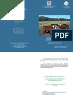 Suplementacion Bovinos Para Carne (1)