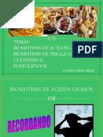 8. Biosintesis de Acidos Grasos