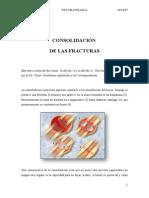 7163839 Consolidacion Fracturas Trauma Clase 4