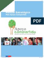 MANUAL ESTRATEGICO 2013.pdf