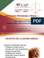 Ayuda 7. Medios de Prueba.ppt
