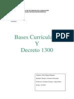 Decreto 1300 Sofia Murga