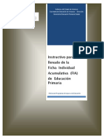 Instructivo FIA