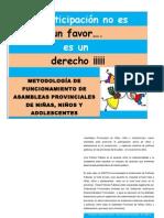 METODOLOGIA ASAMBLEAS  PROVINCIALES DE NIÑEZ Y ADOLESCENCIA-1
