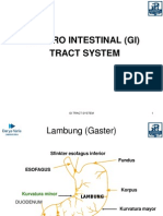 GI Track System Rev
