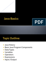 1Java Basics