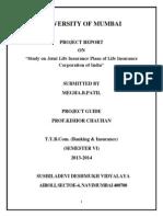 Insurance Final Project Megha