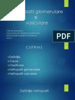 Nefropatii glomerulare si vasculare