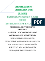 Diarrheagenic e. Coli Official
