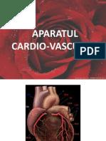 Aparatul Cardio-Vascular (1)
