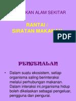 24888522-Rantai-Siratan-Makanan