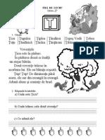 evaluare litera Ţ