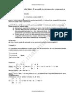 Rezolvarea Sistemelor Liniare de n Ecuatii Si n Necunoscute Cu Parametru