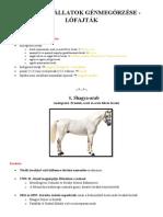 Magyar őshonos ló és szamár fajták