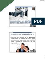 El Entorno de La Organizacion de TI