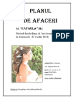 Plan De Afaceri Salon Beauty Style