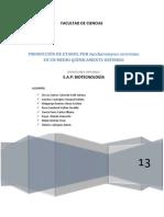 Practica OP Fermentacion ATCC 4624 (2)