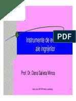 Minca Dana Gallieta - Instrumente de Evaluare a Ingrijirilor