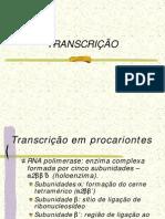transcricao