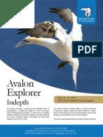 Avalon Explorer Indepth