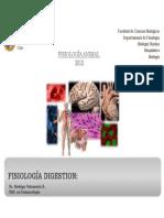 Bio299_2012_+Digestivo+4_+Digestion+y+Absorción