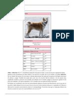 Akita Inu.pdf