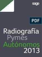 Radiografia Pymes y Autónomos-2013