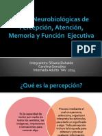 Bases Neurobiológicas de Percepción, Atención, Memoria