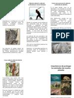 Por qué salvar a las especies en peligro de extinción