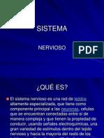 Sistema Nervioso Autonomo 1225216304537297 8