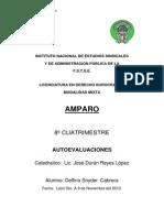 AMPARO_AUTOEVALUACIONes.docx