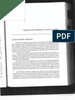 definicion  del problema y acceso al campo.pdf