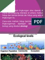 Materi Ekologi Ipa Sd Kamis
